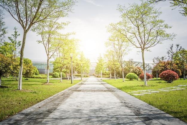 아름다운 공원에서 일출 무료 사진