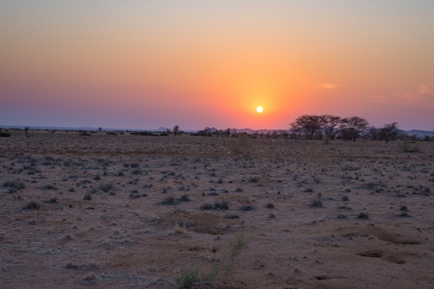 Sunrise over the namib desert,  namib naukluft national park, travel destination in namibia, africa. morning light, mist and fog. Premium Photo