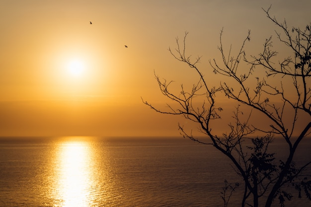 Sunrise over the sea in autumn Premium Photo