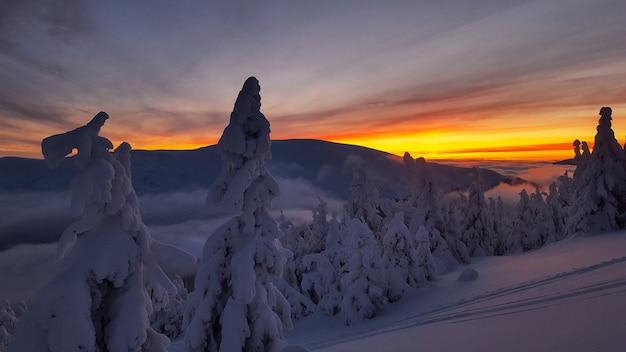 Закат зимой в карпатах Premium Фотографии