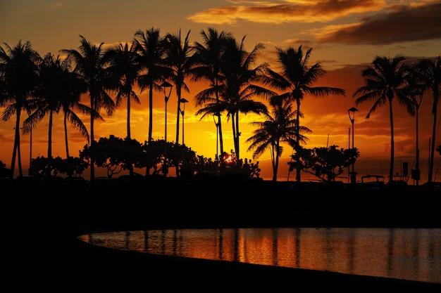 ワイキキビーチ、ホノルル、オアフ島、ハワイからの夕日 Premium写真