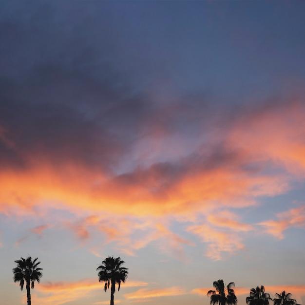 Sunset landscape Free Photo