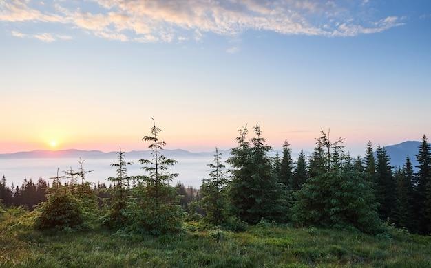 Tramonto nel paesaggio delle montagne. cielo drammatico. carpazi dell'ucraina europa. Foto Gratuite