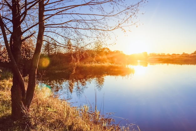 Sunset overlooking the river bank in autumn Premium Photo