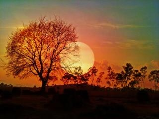 Sunset sonata Free Photo