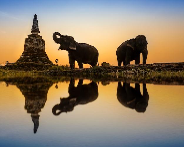 Sunset thai countryside in thailand Premium Photo