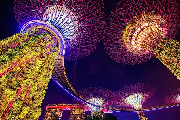Супер дерево в саду у залива, сингапур. Бесплатные Фотографии