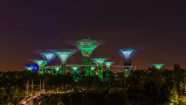 Supertrees illuminated for light show in gardens by the bay in night time, landmark of singapore Premium Photo