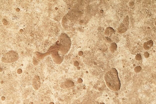 Surface old concrete ground Premium Photo