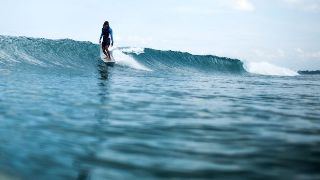 Surfer riding a wave Free Photo
