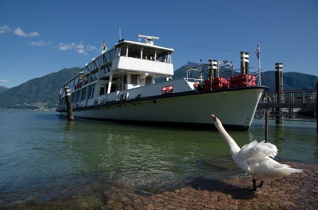 Лебедь на берегу и корабль в заливе Бесплатные Фотографии