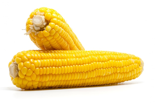 Sweet corn on white for food ingredients and cooking concept Premium Photo