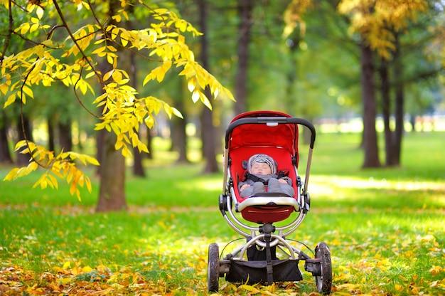 Sweet little baby boy sleeping in stroller in autumn park Premium Photo