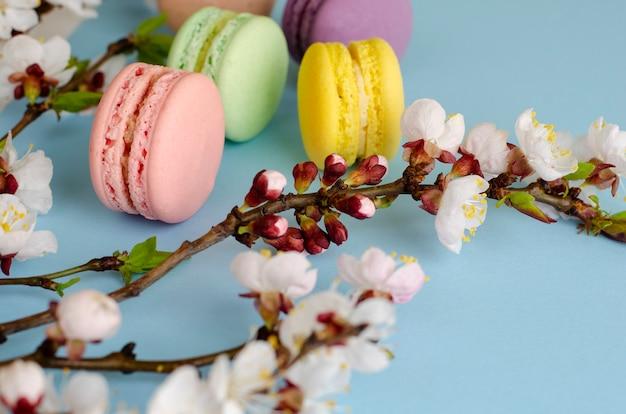 甘いマカロンまたはパステルブルーに咲く杏の花で飾られたマカロン Premium写真