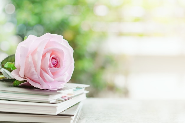 Sweet pink rose flower on spiral notebooks against blurred natural green background Premium Photo
