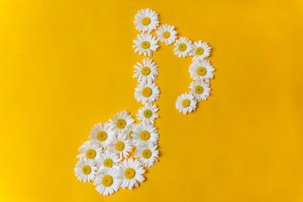 黄色の背景に白いヒナギクからの音符のシンボル Premium写真