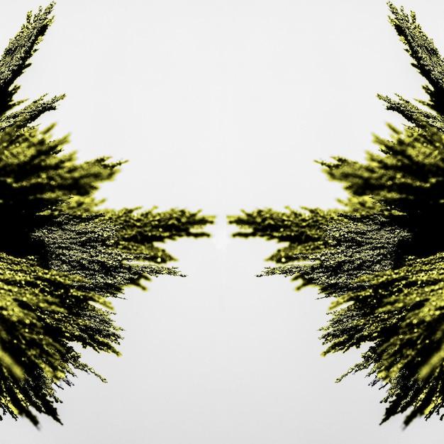 Symmetry of green metallic shaving on white backdrop Free Photo