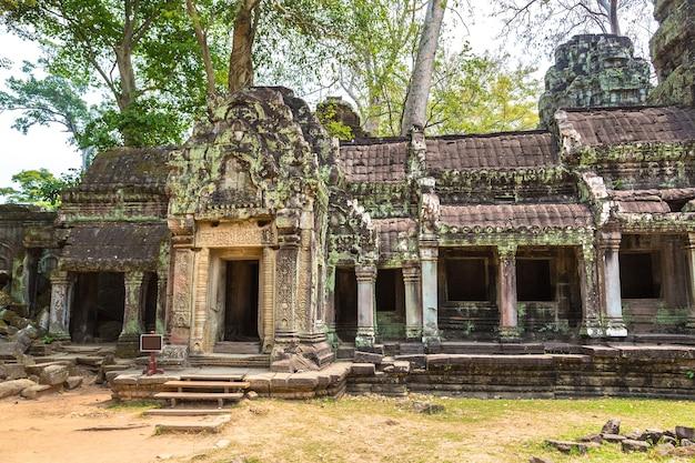 Руины храма та пром в ангкор-ват в сием рипе Premium Фотографии