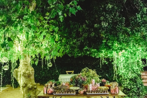 Table with sweet desserts in a garden at night Premium Photo