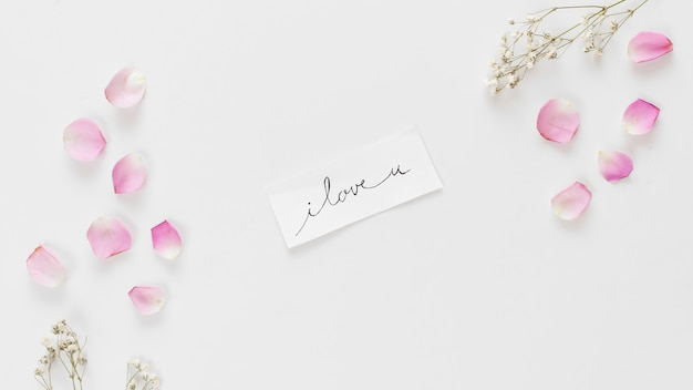 Tag with title between collection of fresh rose petals and plant twigs Free Photo
