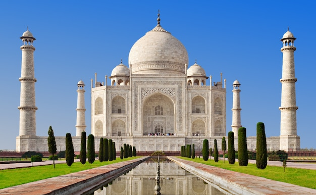 Taj mahal, agra Premium Photo