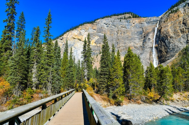 Takakkaw falls, yoho national park, british columbia. Premium Photo
