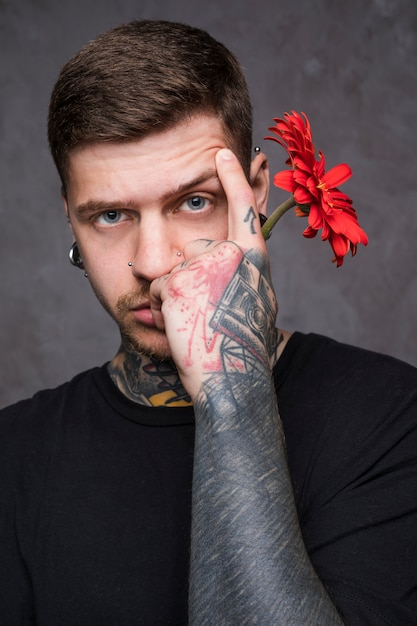 Tattooed young man raising his eyebrow holding red gerbera flower in hand Free Photo
