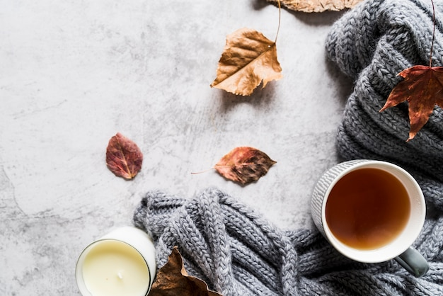 Tea cup and scarf among leaves Free Photo