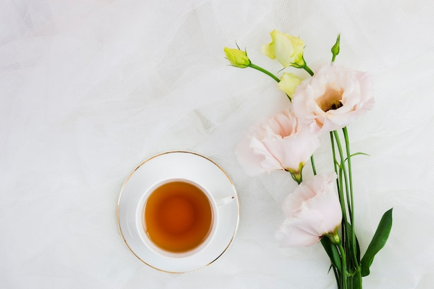 Tea and roses in flat lay Free Photo