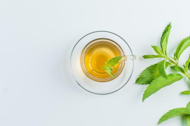 Чай с травами в кружке на белом фоне, плоская кладка. Бесплатные Фотографии