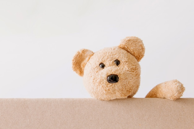 Teddy bear holding on board with white background Premium Photo