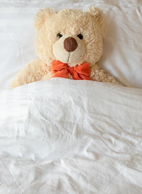 фото сказочного спящего медвежонка начинка девайса