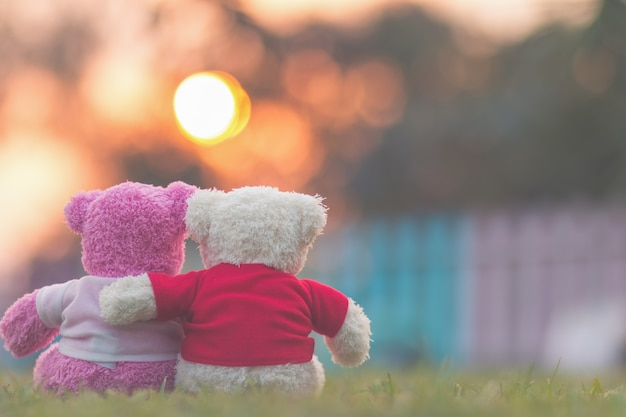 Teddy bear with sunset Premium Photo