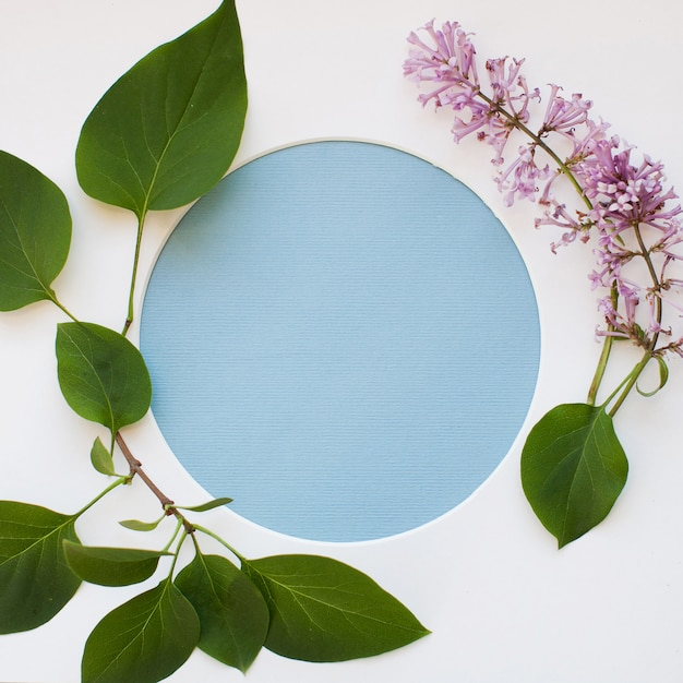 Template made of leaves, blooming lilac flowers, and a round frame on white background Premium Photo