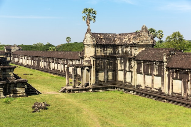 Храм в ангкор том, камбоджа Premium Фотографии