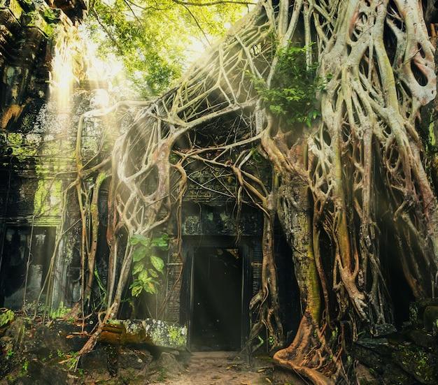 Храм в ангкор-томе Premium Фотографии