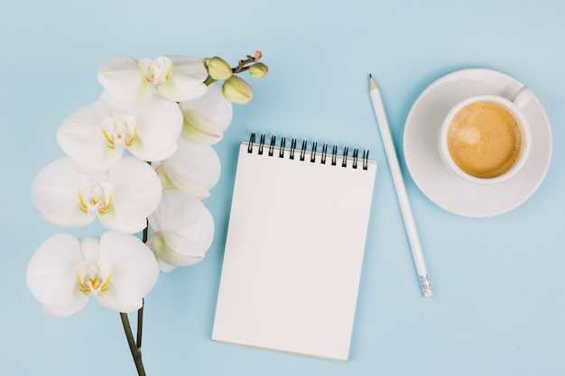 A tender white orchid flowers near the spiral notepad; pencil and coffee cup against blue background Free Photo