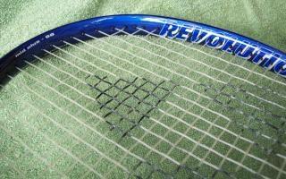 Tennis the game Free Photo