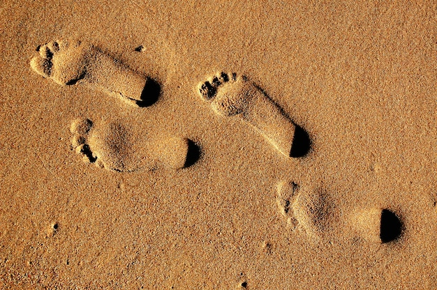 Texture background footprints of human feet on the sand near the water on the beach. Premium Photo