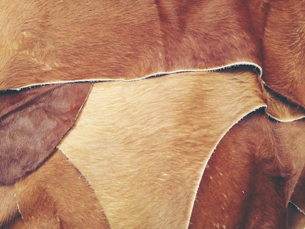 Texture background of good quality cow leather for sale Premium Photo