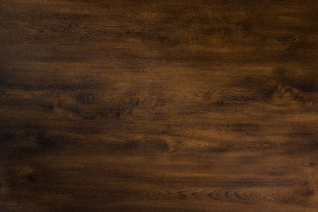 Texture of bark wood Premium Photo