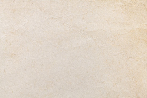 Texture of beige old paper Premium Photo