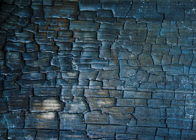Texture of black wooden surface, wood burnt into charcoal Premium Photo