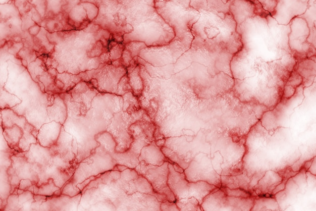 Premium Photo Texture Of Blood Vessels Close Up Photoshop blood background with blood veins and vessels that you can use for free. https www freepik com profile preagreement getstarted 8754646