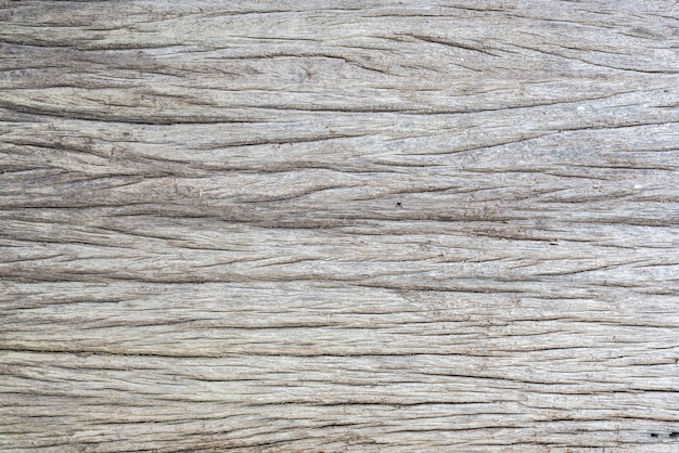Texture of crack wood Free Photo