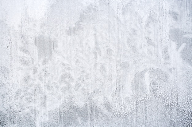 Texture of frozen snow on window glass in form of fantastic plants. Premium Photo