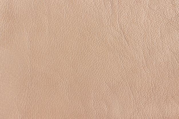 Premium Photo Texture Of Genuine Leather In Beige Color Background Seamless Texture,Safflower Seeds Vs Sunflower Seeds