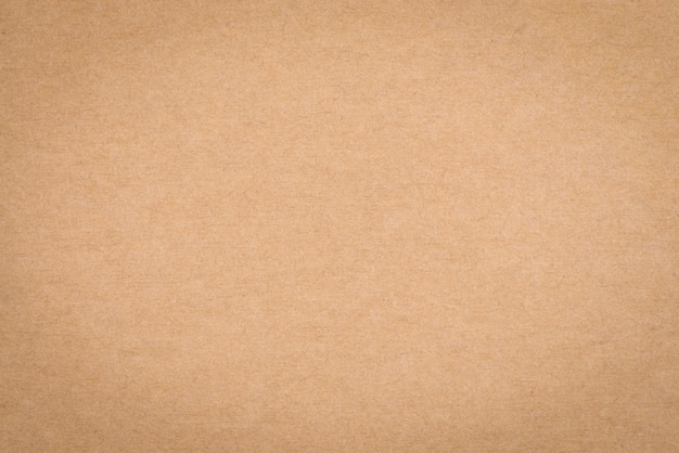 Texture Of Brown Paper Photo