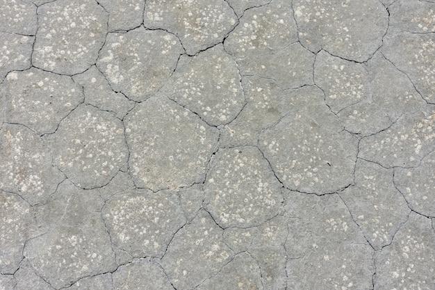 Текстура высушенной серой грязи, высушенной земли Premium Фотографии