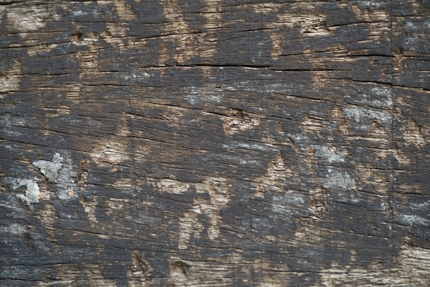 texture of old wooden table photo premium download